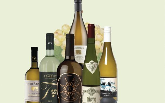 Šest bijelih vina koje ne poznajete (a trebali biste)