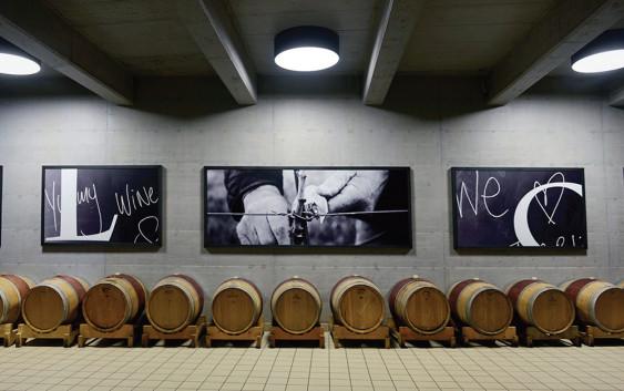 Čari vinskih podruma