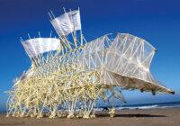 Stvorenja s nizozemske plaže